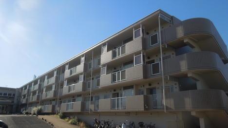rent_house1_1.jpg_2_3_thumb2.JPG